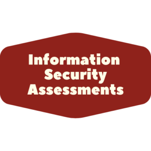 information security assessments